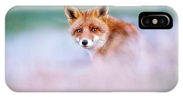 Red Fox In A Mysterious World IPhone Case