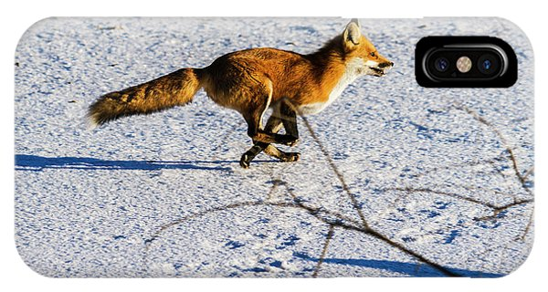 Red Fox On The Run IPhone Case