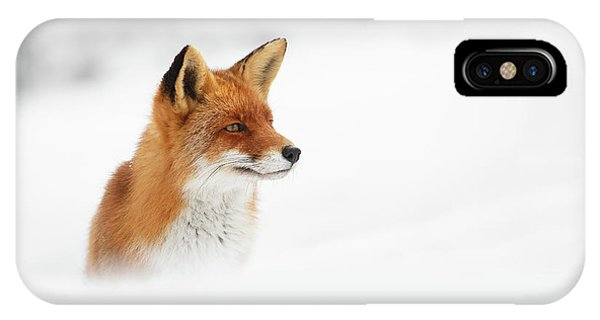 Winter iPhone Case - Red Fox Out Of The Blue by Roeselien Raimond