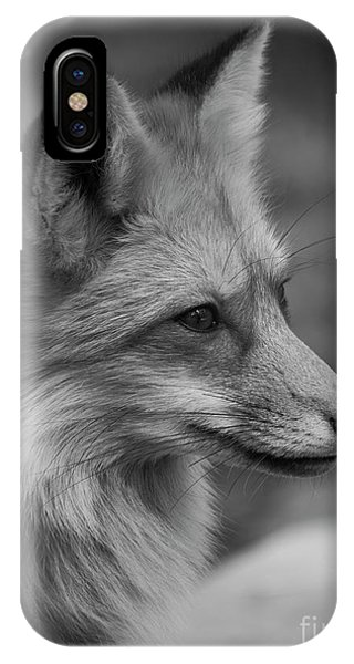 Red Fox Portrait In Black And White IPhone Case