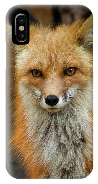 IPhone Case featuring the photograph Red Fox Portrait by John De Bord