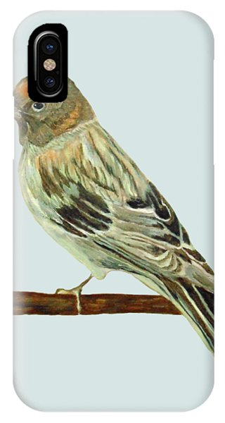 Red-fronted Serin IPhone Case