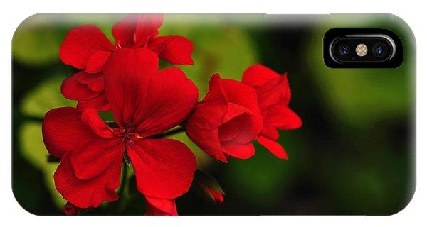 Red Geranium IPhone Case