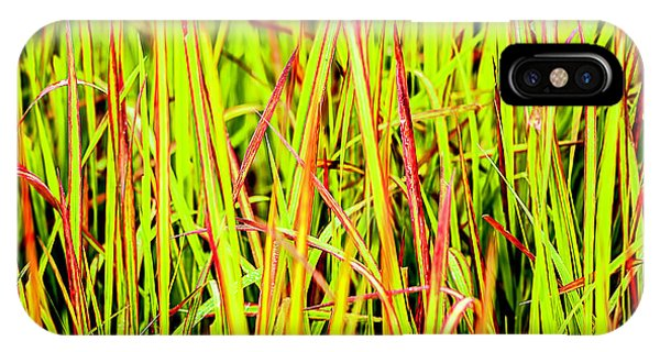 Red Green And Yellow Grass IPhone Case