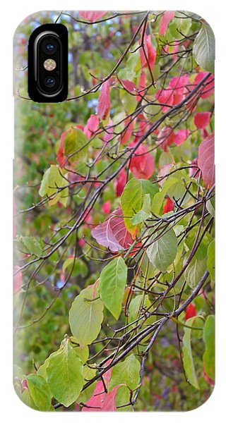 Red Green October IPhone Case