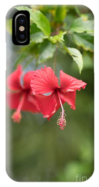 Cambodia iPhone Case - Red Hibiscus Details by Mike Reid