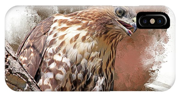 Red Tail Hawk iPhone Case - Red Hot by Donna Kennedy