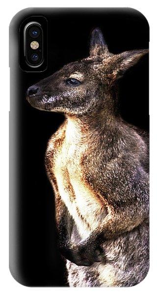 Kangaroo iPhone Case - Red Kangaroo by Martin Newman