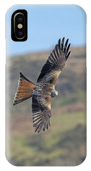 Red Kite IPhone Case