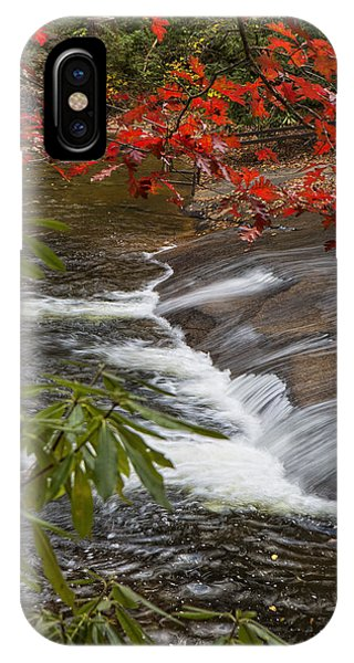 Red Leaf Falls IPhone Case