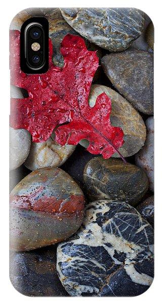 Red Leaf Wet Stones IPhone Case