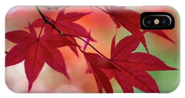 IPhone Case featuring the photograph Red Leaves by Clare Bambers