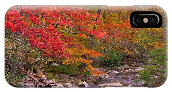 Catoctin Mountain Park iPhone Case - Red Light - Yellow Light - Green Light - Catoctin Mountain Park Big Hunting Creek - Maryland by Michael Mazaika
