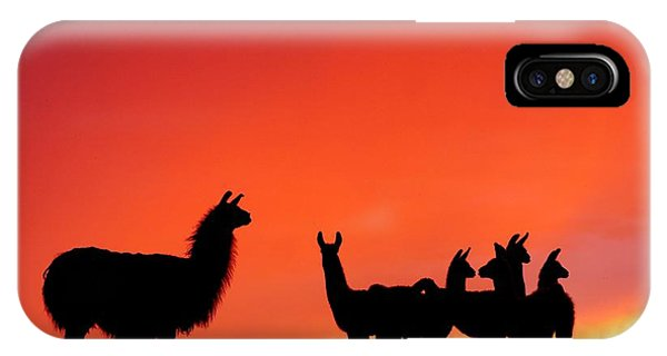 Red Llama Sunset 2 IPhone Case