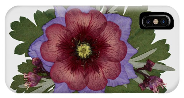 Red Open Faced Potentilla Pressed Flower Arrangement IPhone Case