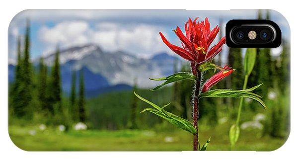 Red Paintbrush On Mount Revelstoke IPhone Case