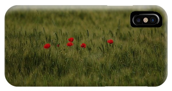 Red Poppies In Meadow IPhone Case