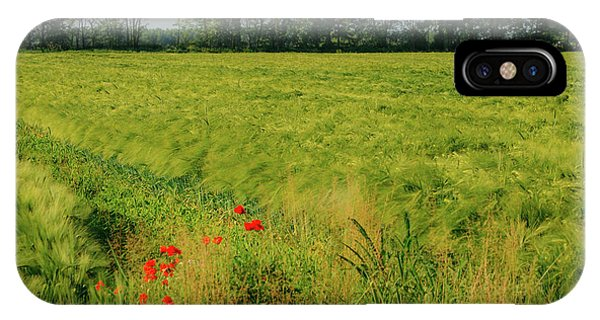 Red Poppies On A Green Wheat Field IPhone Case