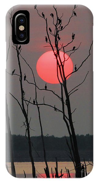 Red Rise Cormorants IPhone Case