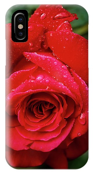 IPhone Case featuring the photograph Red Rose After Rain by John Brink