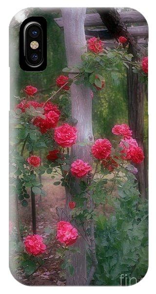 Red Rose Dream IPhone Case