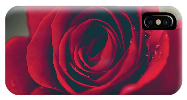 IPhone Case featuring the photograph Red Rose Floral Bliss by Sharon Mau