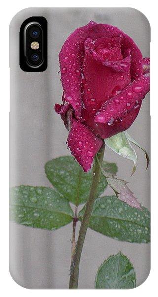 Red Rose In Rain IPhone Case