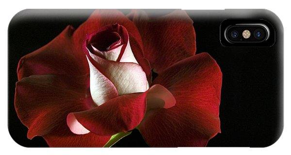 Red Rose Petals IPhone Case
