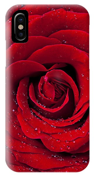 Scent iPhone Case - Red Rose With Dew by Garry Gay