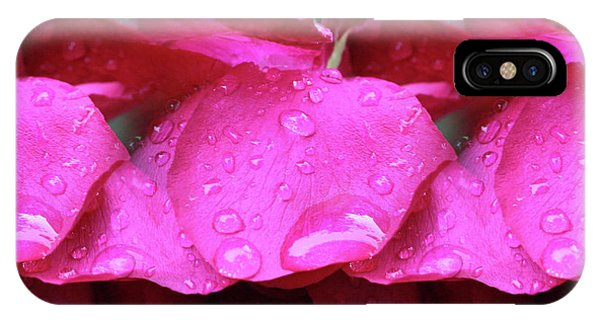 Red Roses And Raindrops IPhone Case