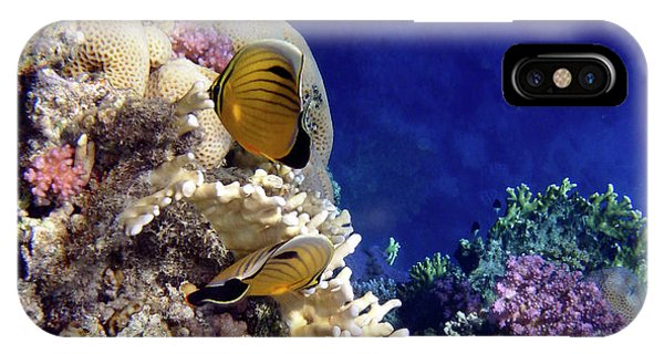 Red Sea Exotic World IPhone Case