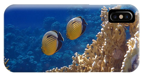 Red Sea Exquisite Butterflyfish  IPhone Case