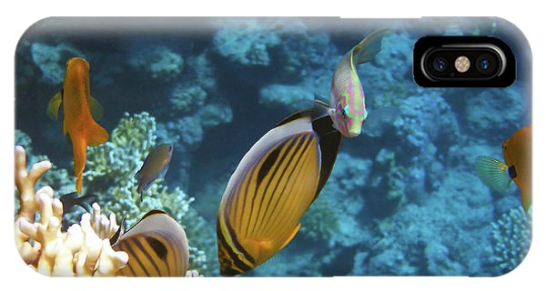 Red Sea Magical World IPhone Case