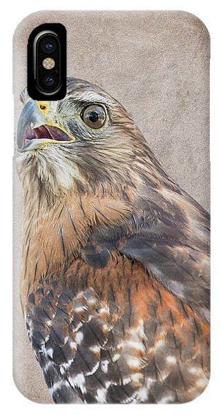 Red-shouldered Hawk Artistic Portrait IPhone Case