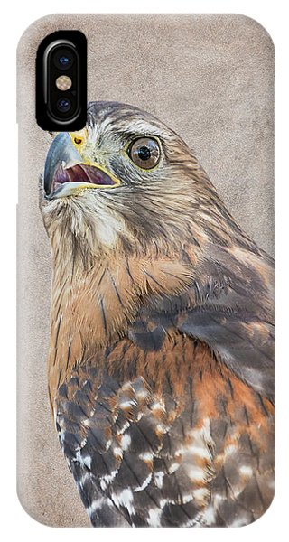 Red-shouldered Hawk Artistic Portrait IPhone Case