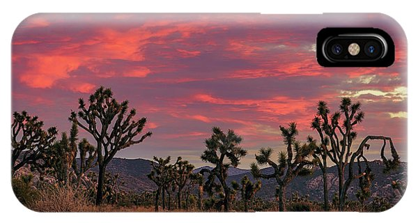 Red Sky Over Joshua Tree IPhone Case