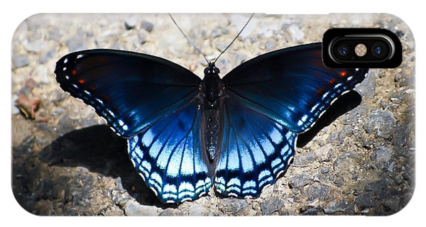 Red-spotted Purple Butterfly IPhone Case