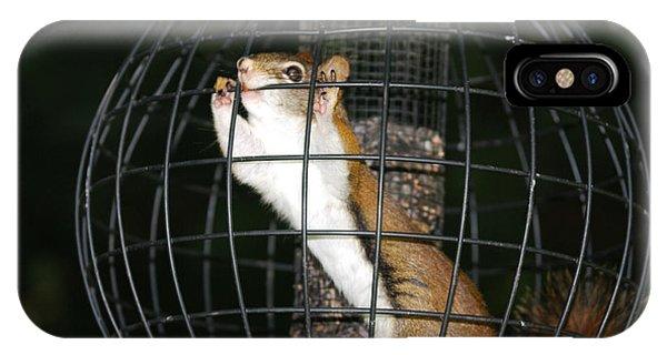 Red Squirrel Jail IPhone Case