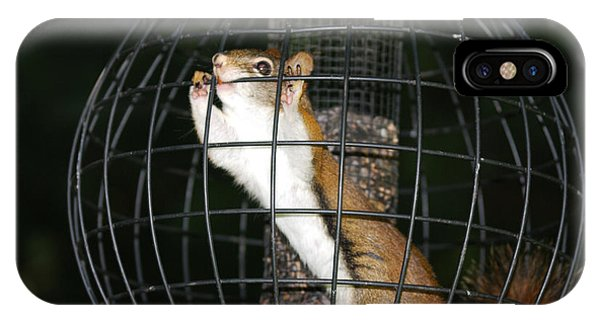 Red Squirrel Jail IPhone Case