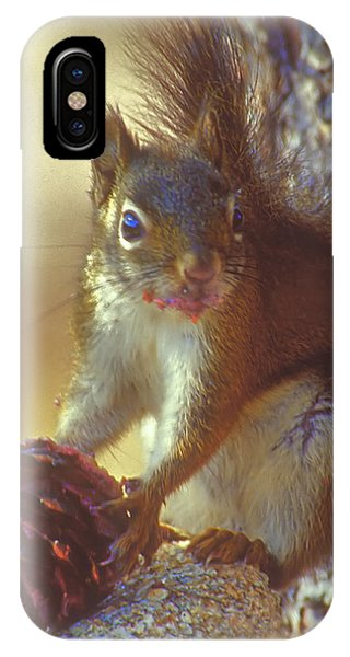 Red Squirrel With Pine Cone IPhone Case