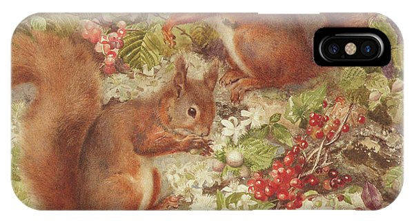 Red Squirrels Gathering Fruits And Nuts IPhone Case