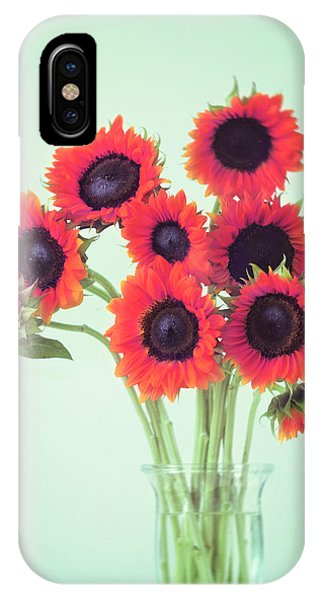 Sunflower iPhone Case - Red Sunflowers by Amy Tyler