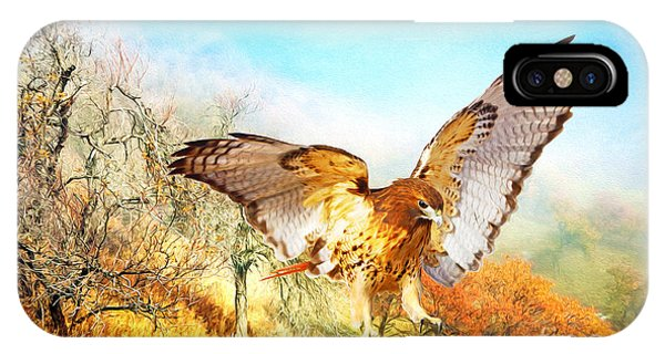 Red Tail Hawk iPhone Case - Red-tail Autumn by Laura D Young