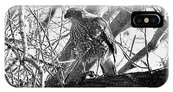 IPhone Case featuring the digital art Red Tail Hawk In Black And White by Deleas Kilgore