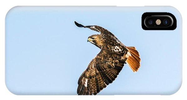 Red-tail Hawk In Flight IPhone Case