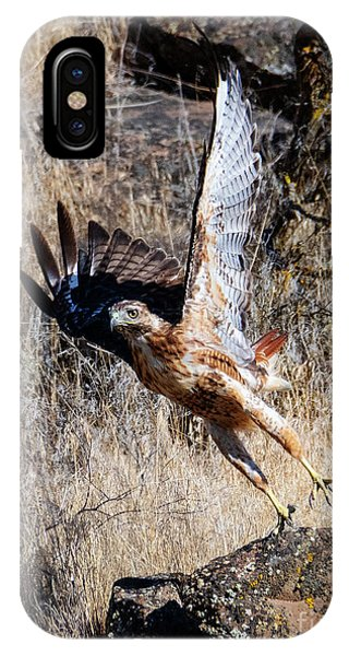 Red Tail Hawk iPhone Case - Red-tail Leap by Mike Dawson