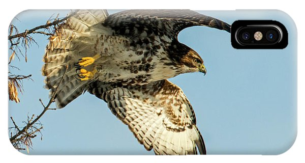 Red Tail Hawk iPhone Case - Red-tail  Takeoff by Mike Dawson