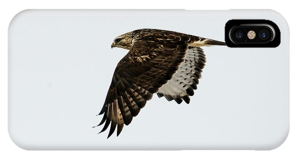 Red Tail Hawk iPhone Case - Red-tail Wings Down by Mike Dawson