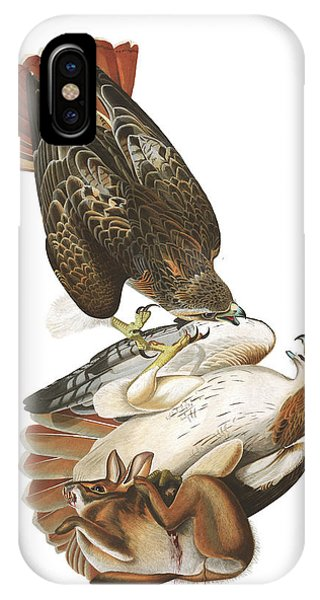 Red Tail Hawk iPhone Case - Red-tailed Hawk by John James Audubon
