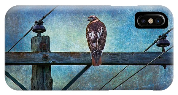 Red-tailed Hawk On Power Pole IPhone Case